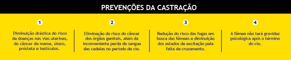 box-castracao