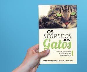 noticias_interna-o-segredo-dos-gatos